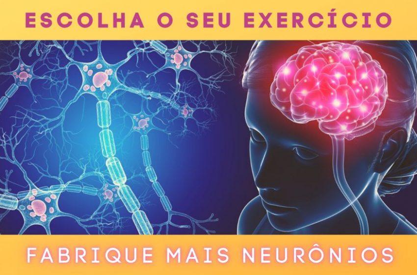 Ative os neurônios com exercícios!
